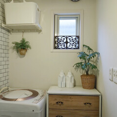 ウィルス対策/調湿効果/おうち時間を楽しむ/おうち時間/模様替え/ひとりで塗れるもん/... 洗面所の壁に漆喰塗料を塗りました。 湿気…(1枚目)