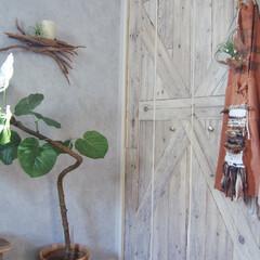 海外インテリア風/寝室/クローゼット/壁紙/DIY/インテリア 寝室奥のクローゼットには板壁柄の壁紙を切…