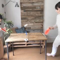 卓球/ダイニングテーブル卓球/100均おもちゃ/おうち時間を楽しもう/暮らしの工夫/おうち遊び/... 毎日のおうち時間を親子で楽しもうとDKの…