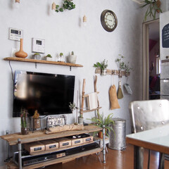 インドアグリーン/テレビ周り/スカイプランター/掃除用具掛け/飾り棚/テレビ台/... 壁掛けにしているテレビ周りはこんな感じで…