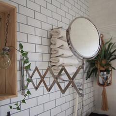 プラントハンガー/ハンギング/へデラ/コウモリラン/インドアグリーン/鏡/... 我が家の洗面所の洗面台は奥行きが広いタイ…