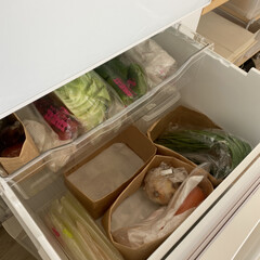 野菜室収納/冷蔵庫収納/冷蔵庫/暮らし/100均 冷蔵庫の野菜室 100均で購入した紙袋を…