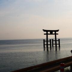 琵琶湖/滋賀/お出かけ/ドライブ/白髭神社/神社/... 琵琶湖一周の旅。 左回りでまわったので夕…