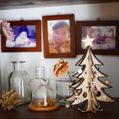写真/ツリー/クリスマス/クリスマスツリー/ガラス容器/ガラスドーム/... 3coinsのウッドツリー♪ 昨年購入し…