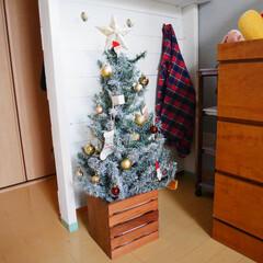 クリスマス/クリスマスツリー/ツリー/ダイソー/100均/ペイント/... グリーンのツリーに飽きたのでダイソーのラ…(1枚目)