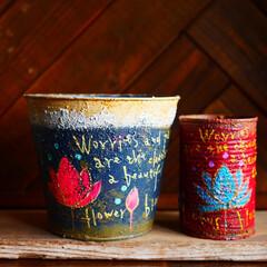 蓮/イラスト/Lotus缶/リメイク缶/リメイク/リメ缶/... 蓮が好きなのでリメイク缶にも蓮のイラスト…(1枚目)