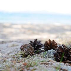 琵琶湖/湖/お出かけ 季節感がなくてごめんなさい。 琵琶湖で夏…