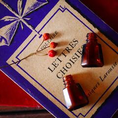 古道具/ビンテージ/アンティーク/瓶/洋書/ディスプレイ 古道具屋さんで購入した小さな小さな薬瓶。…