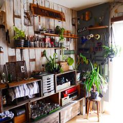 男前インテリア/古道具/収納/アトリエ/作業部屋 作業部屋にグリーンをたくさん配置してみま…