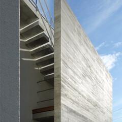 コンクリート/杉板/打放し/一戸建て/不動産・住宅/階段/... ripple house 打放し壁裏の屋…
