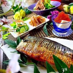 夕飯/手綱蒟蒻/酢の物/白菜と牛肉の旨煮/トビコ豆腐/鯖の塩焼き こんばんは^ ^  今日の1日は良きお天…
