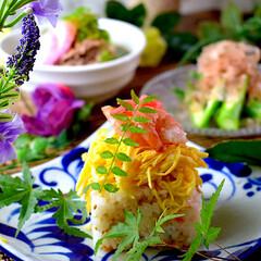 献立/夕飯/オクラのお浸し/チラシ寿司/肉吸いうどん/おうちごはん こんばんは^ ^  今夜は、甘いキツネ入…