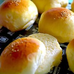 手作りパン/発酵バター/リッチパン/お家ライフ/おうちパン/バーガーバンズ バーガーバンズ^ ^  明日はハンバーガ…