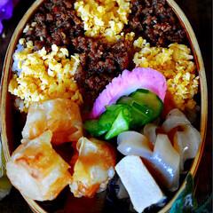 2色丼/お弁当/鶏そぼろ/フォロー大歓迎 おはようございます😊 今日のお弁当です^…