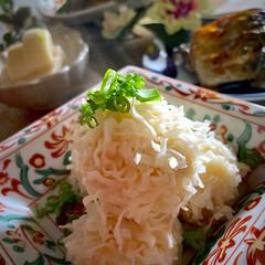 塩鯖/おでん/ホタテ焼売/フォロー大歓迎 今夜の夕飯です^ ^  夕方から寒くなっ…(1枚目)