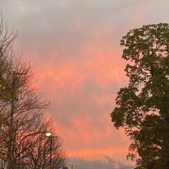 真っ赤な空/空/フォロー大歓迎 今日の空^ ^  今日の空は恐ろしいよう…