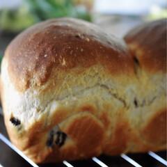 リミアな暮らし/手こねパン/レーズンブレッド/手作りパン/シナモン/レーズン こんばんは^ ^  今夜はレーズンパン^…