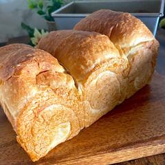アルタイト 食パンケース 1斤 深型 蓋付 185×95×90(その他製菓、製パン用品)を使ったクチコミ「昨日は、息子と一緒に手コネパン^ ^ ほ…」