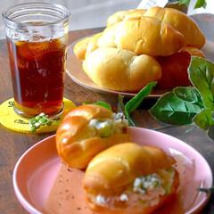 手作りパン/朝ごはん/ポテサラサンド/あまりもので/ポテトサラダ/バターロール 今朝は、バターロールにポテサラをサンド^…