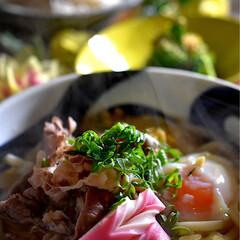 献立/シラス丼/肉うどん こんばんは^ ^  今日の一日もバタバタ…