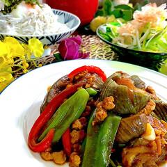 夕飯/シラス丼/豚汁/オニオンスライスサラダ/茄子の味噌炒め こんばんは^ ^  今日も朝から強い雨で…