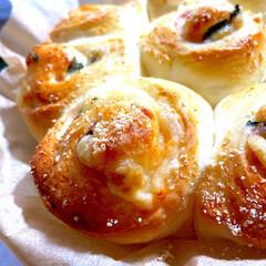 クラフト パルメザンチーズ(チーズ)を使ったクチコミ「今日のパン^ ^  チーズちぎりパンが好…」