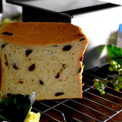 手作りパン/朝ごパン/正角食パン/レーズン/シナモン/おうちごはん/... こんばんは^ ^  昨日焼いたシナモンレ…