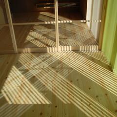 カーテン/ブラインド/リビング/日射 窓のカーテンをどうするか。建物の最終段階…