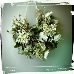 ハーブ/紫陽花/スワッグ 紫陽花とハーブのスワッグ。フレッシュなも…