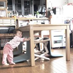 ダイニングテーブル/ダイニングチェア/ダイニング/赤ちゃんのいる生活/リビング/令和カウントダウン/... 我が家の次女さん1歳1ヶ月。 ・ 4ℓの…