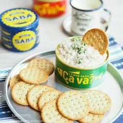盛り付け/料理/おつまみ/缶詰め/さば缶/サバ缶/... いま人気のサバ缶スプレッドを使ったスプレ…