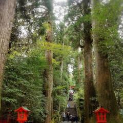 曇天/平日旅行ばんざい/箱根旅行/秋/おでかけ 1泊ですが 箱根に行ってきました😃🎵  …