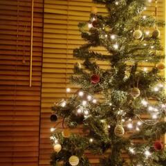 Xmasオーナメント/毛糸って可愛い/ワクワク/クリスマス/クリスマスツリー 仕事から帰ってきたら……  フォローさせ…