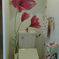 トイレ ピンクの大きなお花がお気に入りです。 ピ…