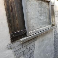 モルタル造形/ガーデン/春のフォト投稿キャンペーン/わたしの手作り こちらもモルタルの壁面 完成から数年経ち…