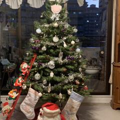 クリスマス/クリスマス2019 はしごにいるおじいさんがサンタさんに変身…