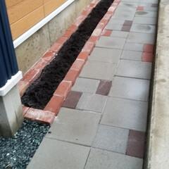 DIY/タガネ/レンガ/花壇/玄関/平板 家の正面に平板通路とおまけで花壇を作成。…