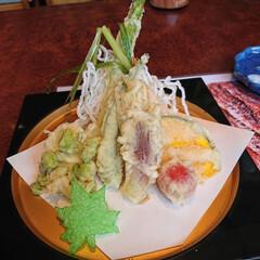 スタミナ丼/夏に向けて/スタミナご飯/スタミナ飯/スタミナ盛り 今日はまたまた娘と大好きなお寿司屋さんで…(3枚目)