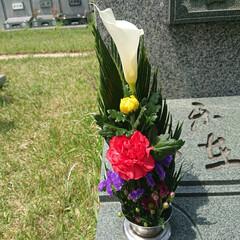 大切な友達 今日は娘と大切な友達のお墓参りに行って来…