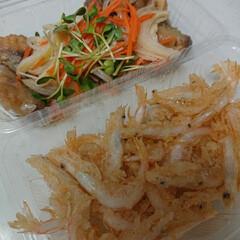 テイクアウト/おうちご飯 今日の飲食店応援キャンペーンは、白海老の…