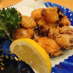 たこの唐揚げ/鴨ロース/秋刀魚の刺身/白子ポン酢/金目鯛の煮付け/大間のマグロ/... 昨夜も娘と大好きなお寿司屋さんで楽しく美…(3枚目)