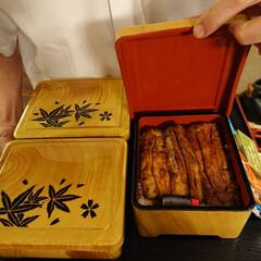 うな重/土用の丑の日/スタミナご飯 土用の丑の日、お気に入りのお寿司屋さんで…(1枚目)