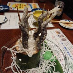 カニクリームコロッケ/稚鮎の唐揚げ/特大あさりの酒蒸し/お出かけ 美味しく食べて美味しく飲んできました😁