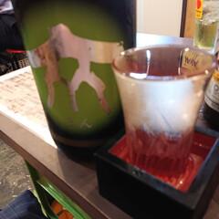 日本酒/カクテル/ビール/夏対策 昨夜は暑くて飲み物進んじゃいました😁 夏…(2枚目)