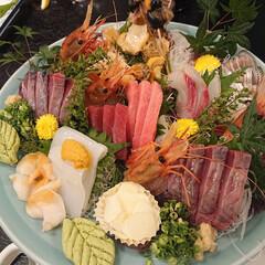 お出かけ/お寿司屋さん 昨夜は学生時代の先輩達と、行きつけのお寿…(1枚目)