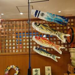 リースの意味は永遠/手作りリース/鯉のぼり 応援してるお寿司屋さん🍣素敵な鯉のぼりの…