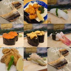 ふぐの唐揚げ/寿司/お出かけ/たこの唐揚げ 昨夜もお気に入りのお寿司屋さんで娘とたく…