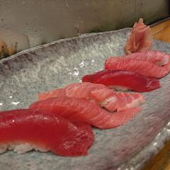 お気に入りのお寿司屋さん/お出かけ 大間のマグロ頂いてきました! 今まで食べ…