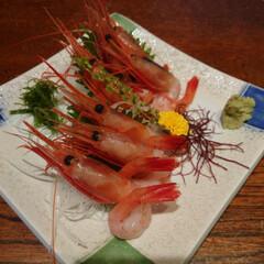 たたき/枝豆/唐揚げ/網焼き/刺身/昼飲み/... 昨夜も娘と昼飲み🍺お寿司屋さんですが他の…