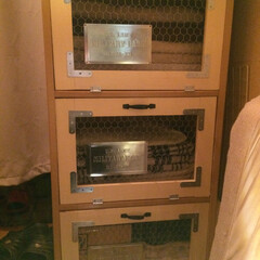 コーナン/チキンネット/DIY/セリア/家具/収納 コーナンのチキンネットでカラボの扉を製作…